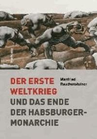 Der Erste Weltkrieg - Und das Ende der Habsburgermonarchie 1914-1918.