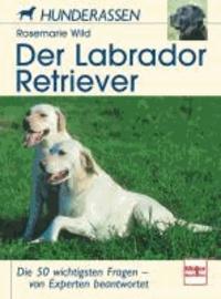 Der Labrador Retriever - Die 50 wichtigsten Fragen - von Experten beantwortet.