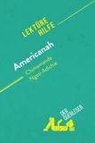 der Querleser - Americanah von Chimamanda Ngozi Adichie (Lektürehilfe) - Detaillierte Zusammenfassung, Personenanalyse und Interpretation.