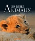 Derek Hall - Les Bébés animaux.