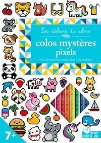 Manuel pdf télécharger gratuitement Colos mystères pixels  - Carnet avec 10 crayons de couleur in French PDF
