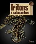 Devin Edmonds - Tritons et salamandres.