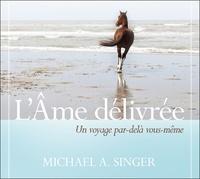 Michael Singer - L'âme délivrée - Un voyage par-delà vous-même. 2 CD audio