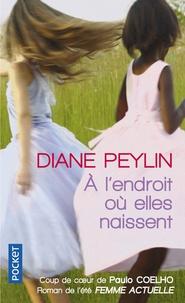 Diane Peylin - A l'endroit où elles naissent.