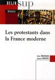 Didier Boisson et Hugues Daussy - Les protestants dans la France moderne.