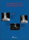 Didier Mainard - Les substituts osseux et du cartilage en 2007.