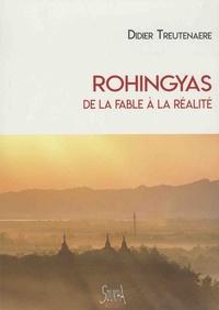 Didier Treutenaere - Rohingyas de la fable à la réalité.