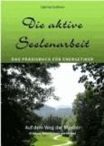 Die aktive Seelenarbeit - Das Praxisbuch für Energetiker - Auf dem Weg der Meister El Morya, Saint Germain und Michael.