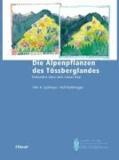 Die Alpenpflanzen des Tössberglandes - Einhundert Jahre nach Gustav Hegi.