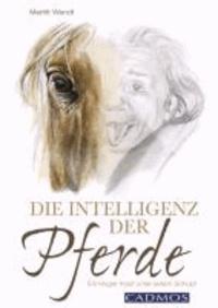 Die Intelligenz der Pferde - Ein kluger Kopf unter jedem Schopf.