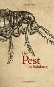 Die Pest in Salzburg.