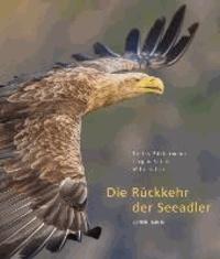 Die Rückkehr der Seeadler.