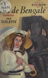 Diélette - Feu de Bengale.