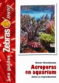 Galabria.be Acroporas en aquarium Image