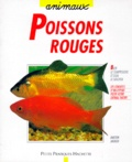 Dieter Jauch - Poissons rouges.