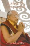 Dilgo Khyentse Rinpoche - .