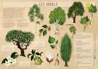 Rebecca Roméo - Les arbres.