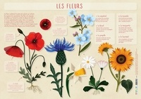 Rebecca Roméo - Les fleurs.