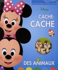 Disney - Cache cache.