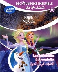 Disney - La Reine des Neiges : le ciel nocture - Les ciences à Arandelle.
