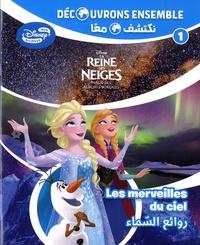 Disney - La Reine des Neiges : le ciel nocturne - Les merveilles du ciel.