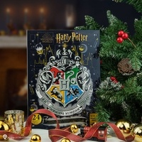 DISTRINEO - CALENDRIER DE L'AVENT 2020 HARRY POTTER - CHRISTMAS IN THE WIZARDING WORLD