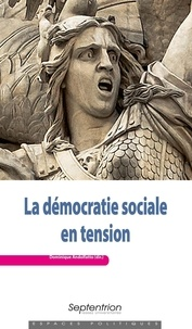 Dominique Andolfatto - La démocratie sociale en tension.