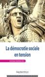 Dominique Andolfatto - La démocratie sociale en tension.