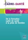 Dominique Bourgeon - De la formation cadre de santé à la prise de fonction.