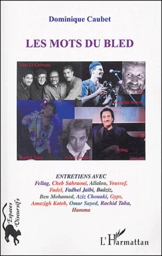 Dominique Caubet - Les mots du Bled - Création contemporaine en langues maternelles, Les artistes ont la parole.