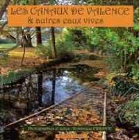 Dominique Errante - Les canaux de Valence.