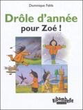 Dominique Falda - Drôle d'année pour Zoé ! - CP série verte.