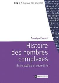 Dominique Flament - Histoire des nombres complexes - Entre algèbre et géométrie.