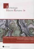 Dominique Goguey et Jacky Bénard - Structures en pierre du plateau du Chatillonnais (Côte d'Or) du Hallstatt à l'Antiquité tardive - L'apport de l'archéologie forestière.