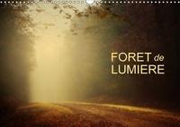 Dominique Guillaume - Forêt de lumière (Calendrier mural 2017 DIN A3 horizontal) - Magie de l'ombre et de la lumière au cour de la forêt (Calendrier mensuel, 14 Pages ).