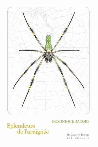 Dominique Jacobs - Splendeurs de l'araignée.