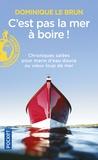 Dominique Le Brun - C'est pas la mer à boire !.