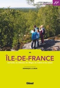 En Ile-de-France- Les forêts, les châteaux, les villages, les rivières et les canaux - Dominique Le Brun pdf epub