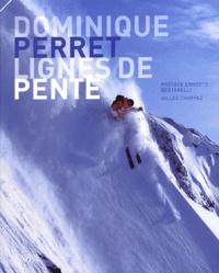 Dominique Perret - Lignes de pente.