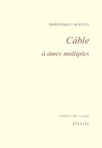 Dominique Quélen - Câble à âmes multiples.