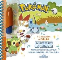 Dragon d'or - Pokémon : A la découverte de Galar - Peins avec de l'eau pour voir apparaître les couleurs !.