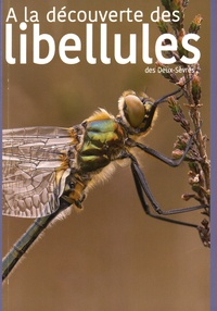 DSNE - A la découverte des libellules des Deux-Sèvres.