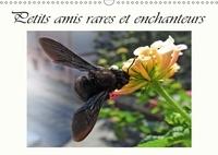 Dusanka Djeric - Petits amis rares et enchanteurs (Calendrier mural 2017 DIN A3 horizontal) - Organisateur - Visiteurs des fleurs (Calendrier anniversaire, 14 Pages ).