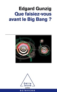Que faisiez-vous avant le Big Bang ?.pdf