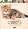 Edigo - 200 chatons trop mignons.