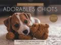 Editions 365 - Adorables chiots - 52 magnifiques photos de bébés chiens à croquer et un agenda pour vous organiser.