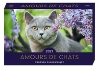 Editions 365 - Amours de chats.