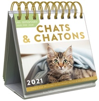 Editions 365 - Chats et chatons.