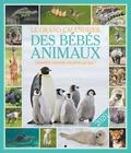 Editions 365 - Le grand calendrier des bébés animaux.
