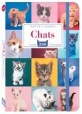 Editions 365 - Mon petit agenda Chats.